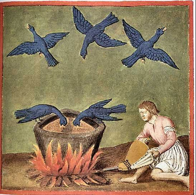 birds, nigredo stage, blackening,alchemy, site source: www.channeledessence.com/2011/06/26/birds-of-alchemy/