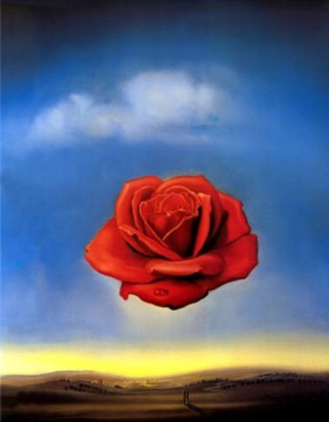 Salvador-Dali-The-Meditative-Rose