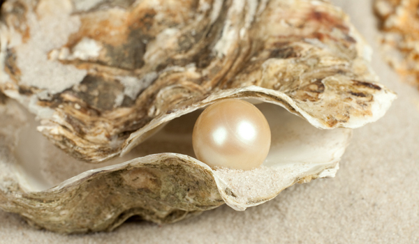 oyster, pearl, http://www.livescience.com/32289-how-do-oysters-make-pearls.html