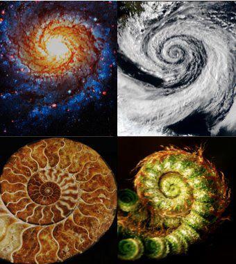 recurring fibonacci spiral
