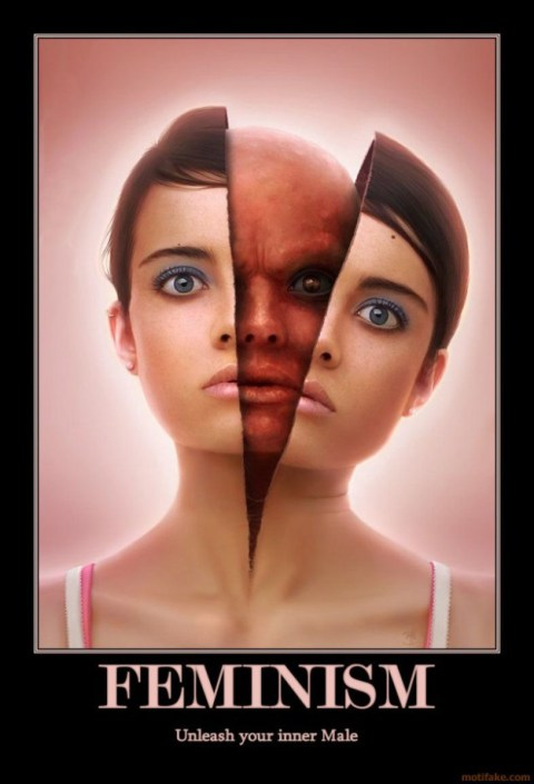 feminism-demotivational-poster-1238331423