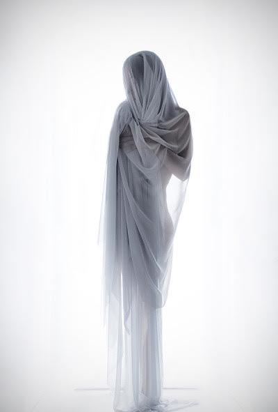 chiffon, sheer figure, mysterious